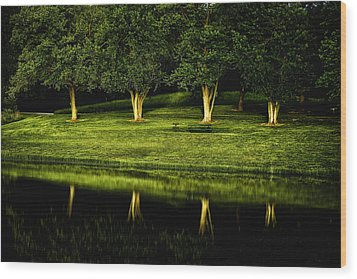 Broemmelsiek Park Green Wood Print by Bill Tiepelman
