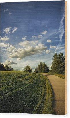 Broemmelsiek Park Walking Track Wood Print by Bill Tiepelman