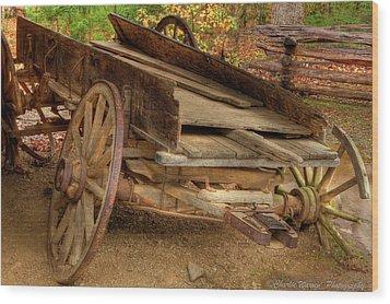 Broke Spoke I Wood Print by Charles Warren