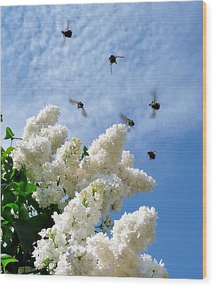 Bronze Bugs Fly In The Blue Sky Wood Print
