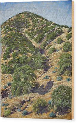 Brown Canyon Wood Print by Drusilla Montemayor