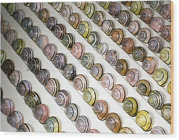 Brown-lipped Snail Colour Variants Wood Print by Dr Keith Wheeler