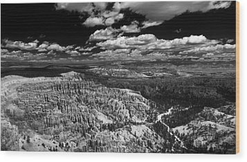 Bryce Canyon Ampitheater - Black And White Wood Print