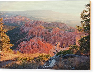 Bryce Canyon At Sunrise Wood Print by James Bethanis