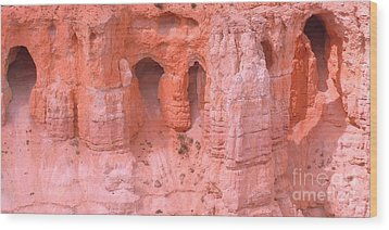 Wood Print featuring the photograph Bryce Canyon Grottos by Ann Johndro-Collins