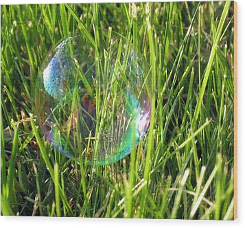 Wood Print featuring the photograph Bubble In The Grass by Darleen Stry