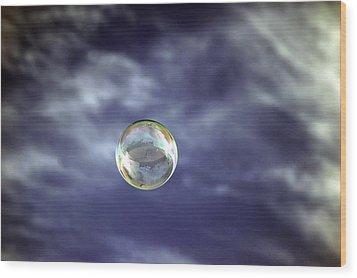 Bubble Self Portrait Wood Print by Dan McManus