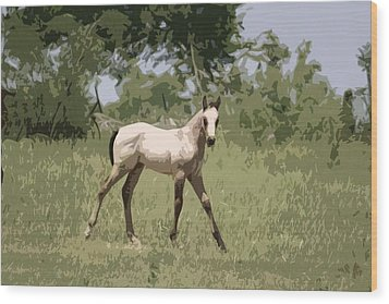 Buckskin Pony Wood Print