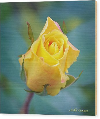 Budding Yellow Rose Wood Print by Mikki Cucuzzo