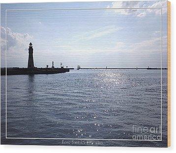 Buffalo Main Lighthouse And Buffalo Harbor Wood Print by Rose Santuci-Sofranko