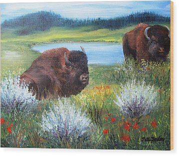 Buffalo Repose  Wood Print by Patti Gordon