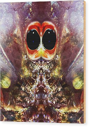 Bug Eyes Wood Print by Skip Nall