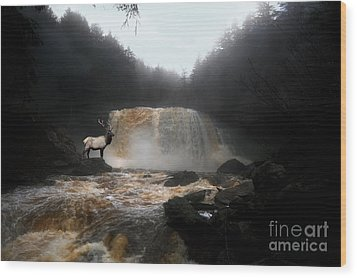 Wood Print featuring the photograph Bull Elk In Front Of Waterfall by Dan Friend