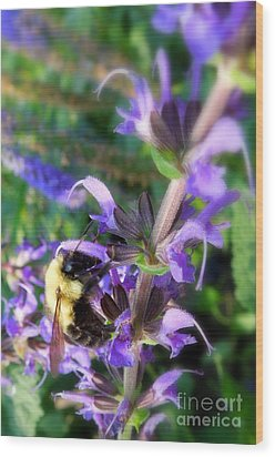Bumble Bee On Flower Wood Print by Renee Trenholm