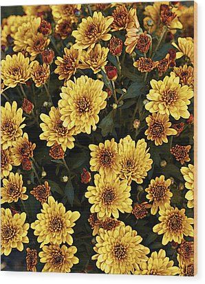 Bunch Of Flowers Wood Print by Malania Hammer