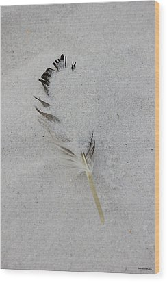 Buried Feather Wood Print by Deborah Hughes