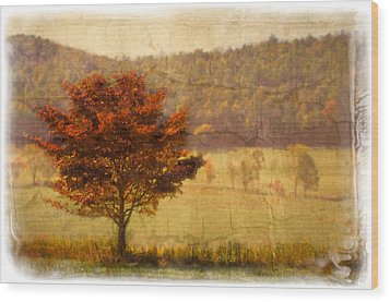 Burning Bush Wood Print by Debra and Dave Vanderlaan