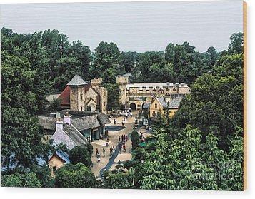 Busch Garden Township Wood Print by Joe Finney