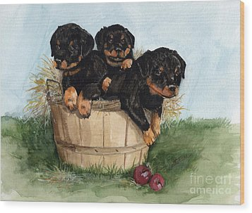 Wood Print featuring the painting Bushel Of Rotty Pups  by Nancy Patterson