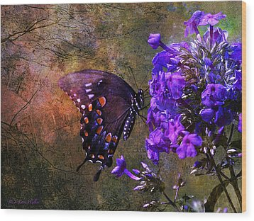 Busy Spicebush Butterfly Wood Print