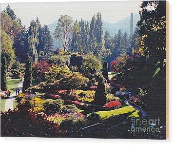 Butchart Gardens Splendor Wood Print