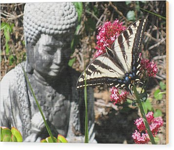 Wood Print featuring the photograph Butterfly And Buddha by Sue Halstenberg