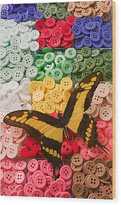 Butterfly And Buttons Wood Print by Garry Gay