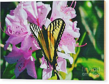 Butterfly And Rhododenren Wood Print by Judy Via-Wolff