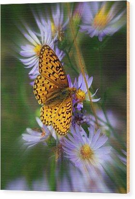 Butterfly Blur Wood Print by Marty Koch