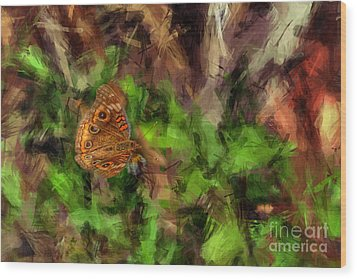Wood Print featuring the photograph Butterfly Camouflage by Dan Friend