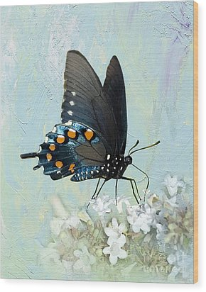 Butterfly Candy Wood Print by Betty LaRue