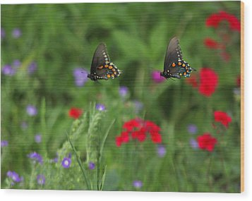 Butterfly Chase Wood Print
