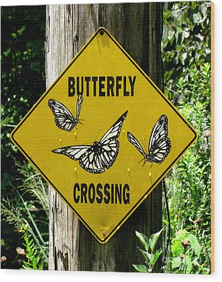Butterfly Crossing Wood Print