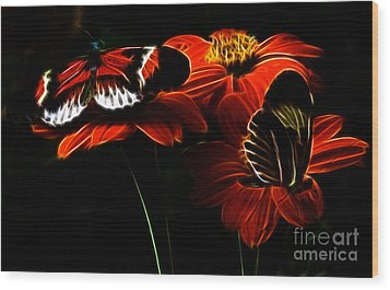 Butterfly Duet Wood Print by Darleen Stry