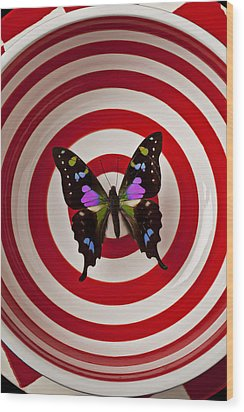 Butterfly In Circle Bowl Wood Print by Garry Gay