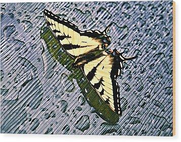 Butterfly In Rain Wood Print by Susan Leggett