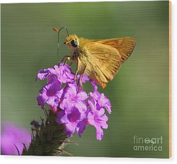 Butterfly Kisses Wood Print by Patrick Witz