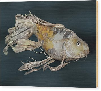 Butterfly Koi E Wood Print by Janna Morrison