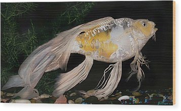 Butterfly Koi Named Flower Wood Print by Janna Morrison
