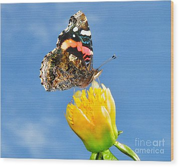 Butterfly N Flower Wood Print