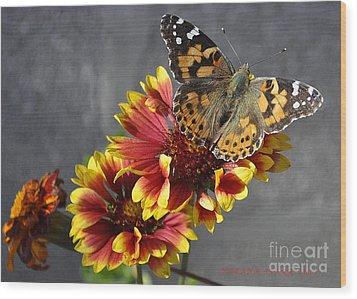 Wood Print featuring the photograph Butterfly On A Gaillardia by Verana Stark