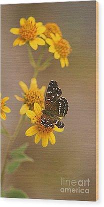 Wood Print featuring the digital art Butterfly On Marigold by John  Kolenberg