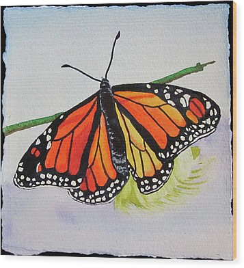 Butterfly Wood Print by Teresa Beyer