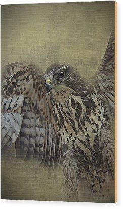 Wood Print featuring the photograph Buzzard Preparing To Fly by Ethiriel  Photography