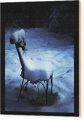 Wood Print featuring the photograph By The Light Of The Moon by Susanne Still
