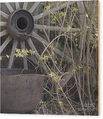Wood Print featuring the photograph By The Rock Wall 1 by Laurinda Bowling