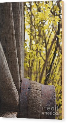 Wood Print featuring the photograph By The Rock Wall 2 by Laurinda Bowling