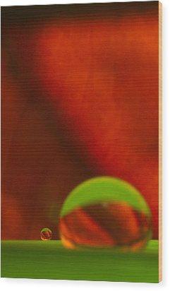 C Ribet Orbscape Le Petit Wood Print