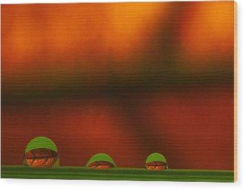C Ribet Orbscape Three Perceptions Wood Print by C Ribet