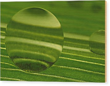 C Ribet Orbscapes Green Jupiter Wood Print by C Ribet